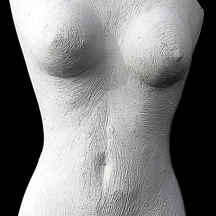 Section - plaster maquette for torso